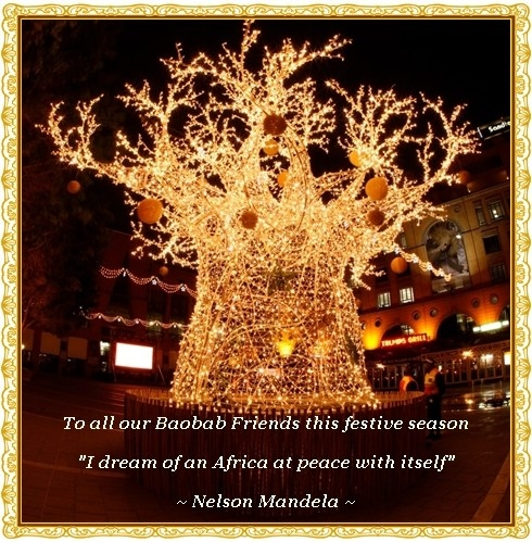 The Baobab Christmas Tree in Nelson Mandela Square