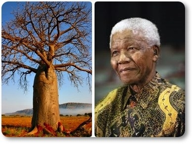 Mandela: an icon of Africa for the world