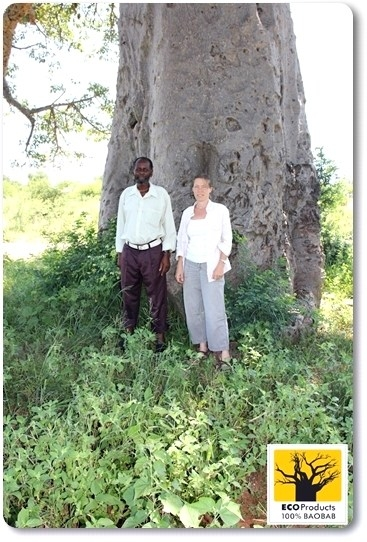 Local headman and I chat about baobabs
